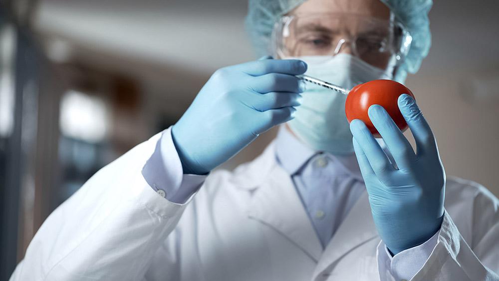 выведение токсинов и шлаков из огранизма детокс программа