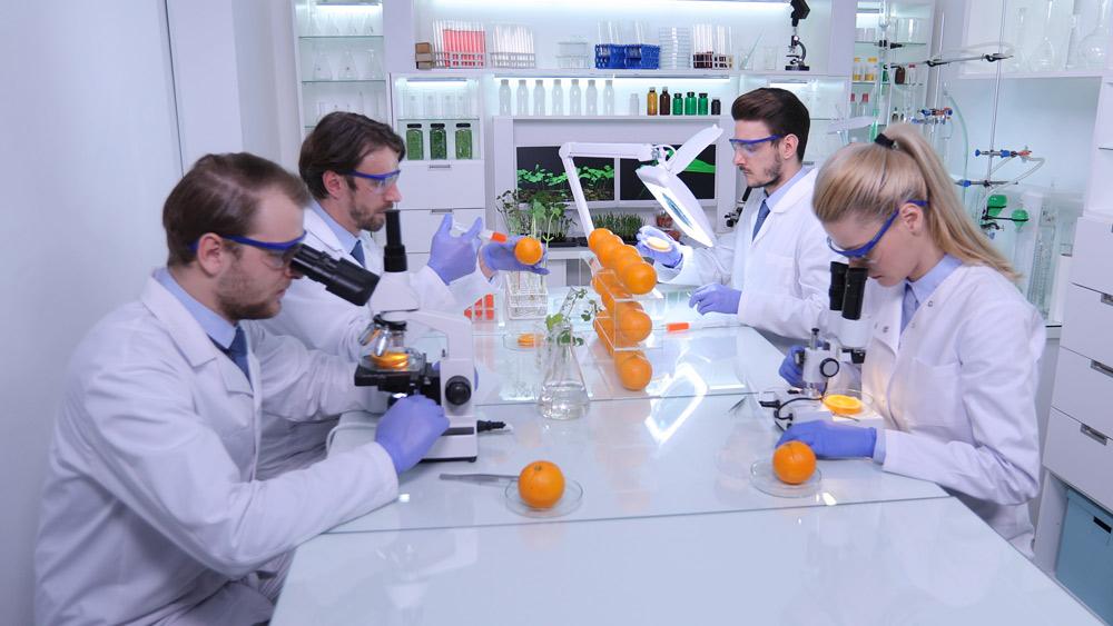 выведение токсинов и шлаков из огранизма детокс-программа